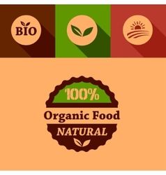 Flat organic food design elements vector