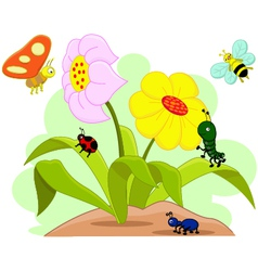 insects and flower vector image