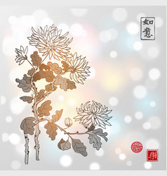 Chrysanthemum flowers in oriental style on white vector
