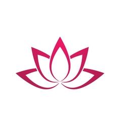 lotus flowers vector image vector image