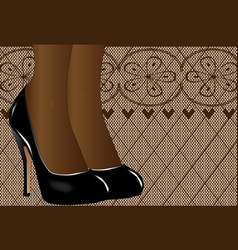 shoes and stockings vector image
