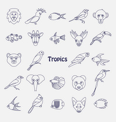 tropical birds animals and vector image vector image