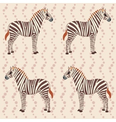 Pattern with zebras and flower stripes vector image