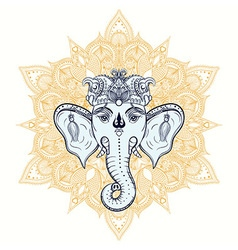 Hand drawn elephant head on ornament background vector