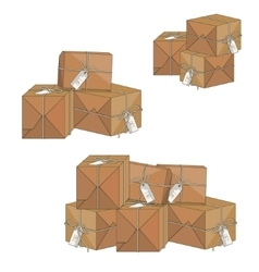packaging boxes with gift tag vector image