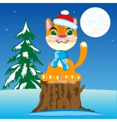 Redhead cat in cloth vector image vector image