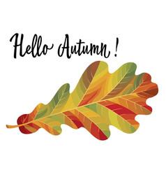 Autumn oak leaf isolated on white background vector