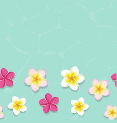 Tropical frangipani flowers in the water vector