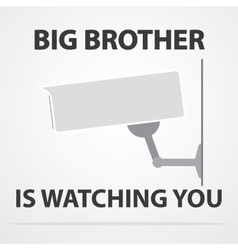 Big brother vector