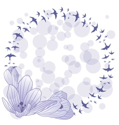 Crocus and swallow vector