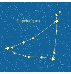 Capricornus zodiacal constellation vector