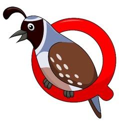 Alphabet q with quail cartoon vector