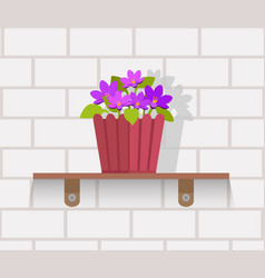 Houseplant design flat concept vector