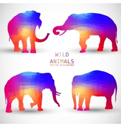 Set Colorful Geometric Silhouettes of Elephant vector image