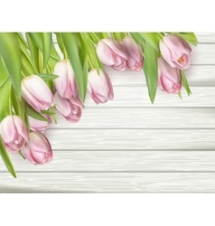 Color tulips on wooden background eps 10 vector