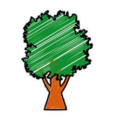 cartoon big tree vector image vector image
