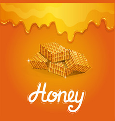 natural honey poster in cartoon style vector image