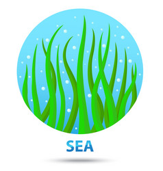 sea nature icon vector image vector image