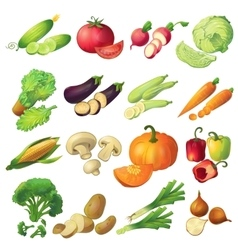 Fresh vegetables icon set vector