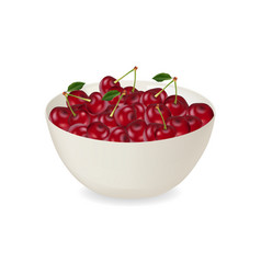a plate of delicious juicy cherries vector image