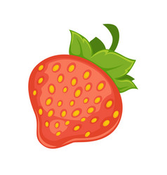 Sweet delicious ripe strawberry with leaves vector
