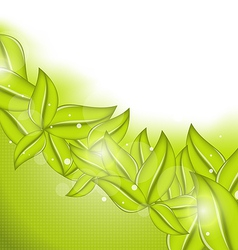 Ecology background with eco green leaves vector image