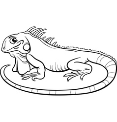 iguana cartoon coloring book vector image