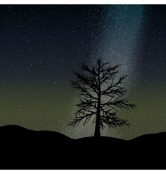night sky and tree background vector image vector image