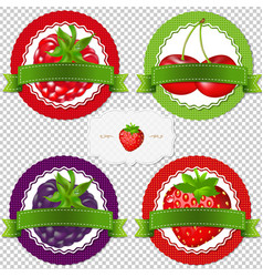 Berry labels vector
