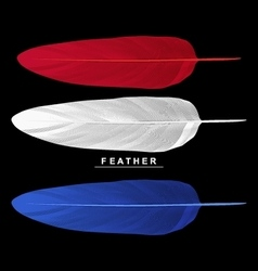 Set of feathers isolated on black background vector