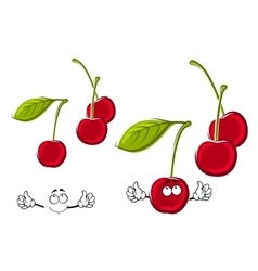 Cartoon juicy red cherries fruits vector