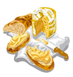 cheese with bread vector image