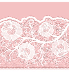 Seamless horizontal lace ribbon with unusual vector image