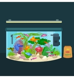 Aquarium fish seaweed underwater tank isolated vector