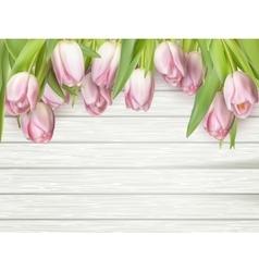 Beautiful pink tulips EPS 10 vector image