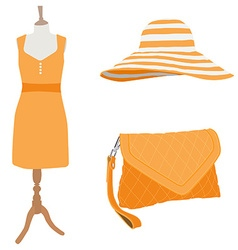 Woman dress and accessories vector