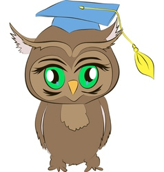 Academic owl cartoon vector