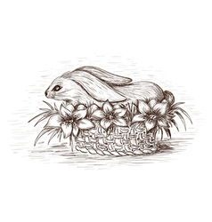 Easter rabbit in the basket with flowers and eggs vector image