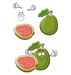 Ripe cartoon green guava fruit vector