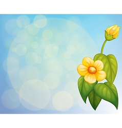 A stationery with a yellow flower vector image vector image