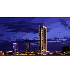 tallest building in the night city vector image vector image