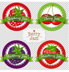 Berry labels set vector