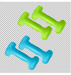 Dumbbells isolated on transparent background vector