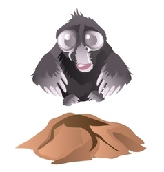 Sad mole crying next its mink vector