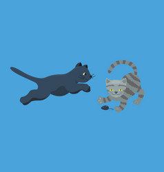 Cat breed cute kitten gray pet portrait fluffy vector