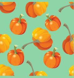 orange pumpkins seamless pattern vector image vector image
