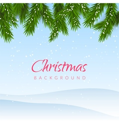 Christmas background with snow and fir tree border vector