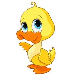 Baby Duck vector image