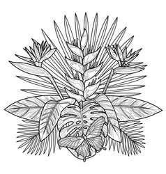 tropical bouquet coloring page vector image vector image