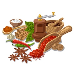 seasonings with condiment and spices vector image